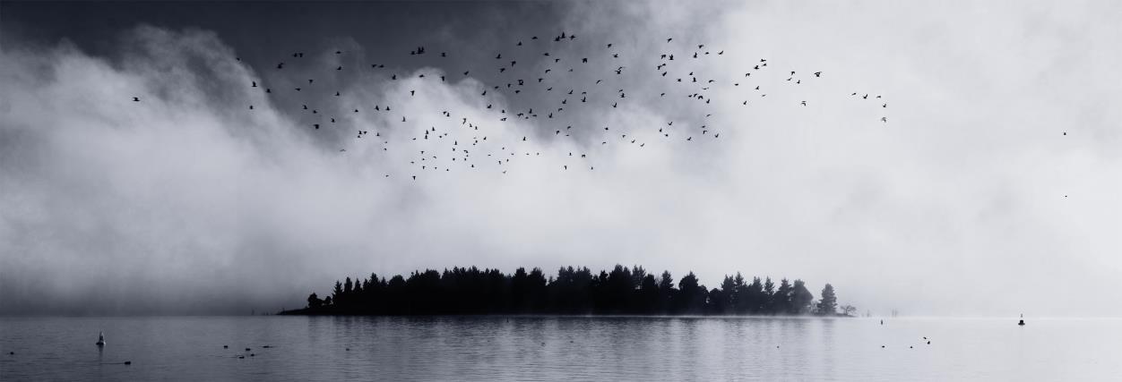 Panoramas by Ian Burrows - Focus Photographer